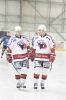 Zápas s HC Hořovice (5.3.2017)