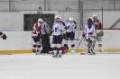 Zápas s HC Kladno (29.1.2017)